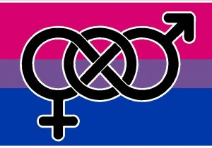 Bisexual-Awareness-or-Queer-Awareness-Week-bisexual-flag-1029×688