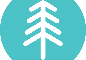branch-out-tree-logo